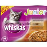 Whiskas Junior 3+1