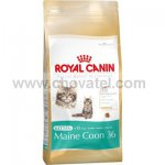 Royal Canin FBH Kitten Maine Coon 400g