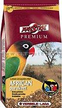African Parakeet 1kg