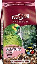Amazone Parrot