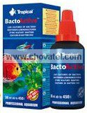 Bacto Active 30ml