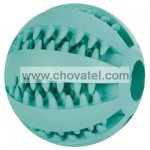DentaFun míč s mátou 5cm