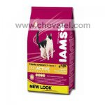 Iams Cat Mature & Senior rich in chicken 1,5kg