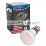 Basking Spot-Lamp 75W