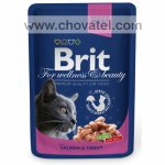 Brit Premium Cat kapsa with Salmon & Trout 100g