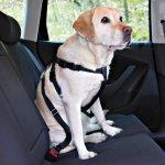 Postroj do auta pro psa M 50-70cm TRIXIE