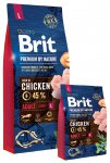 Brit Premium Dog Nature Adult L 3 x 15kg